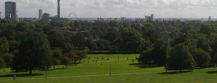 Primrose Hill is one of London as a local.