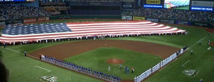 Tropicana Field is one of Ballparks Across Baseball.