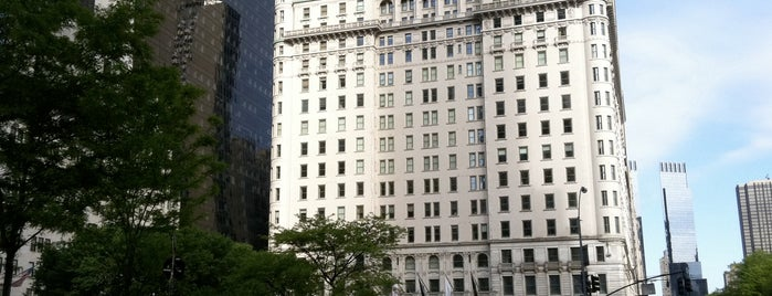 The Plaza Hotel is one of NYC I see.