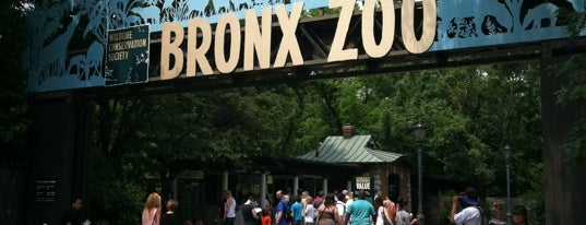 Bronx Zoo is one of Favorites to Re-visit.
