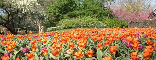 Missouri Botanical Garden is one of St. Louis's Best Great Outdoors - 2013.
