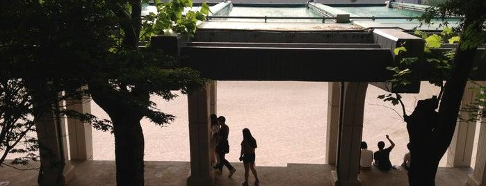 홍익대학교 운동장 is one of University.