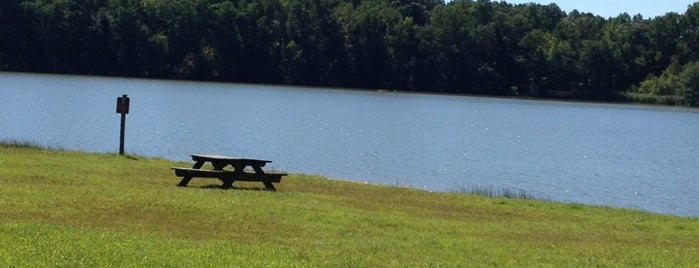 Lums Pond State Park is one of Favorite Spots in Delaware.