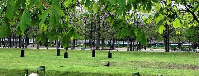 Tuileries Garden is one of Best of Paris.