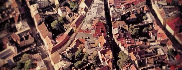 Toompea is one of Pribaltica.