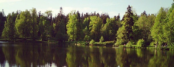 Шуваловский парк is one of ЖК Северная Долина.