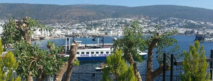 Trafo Bodrum is one of yas's choice.