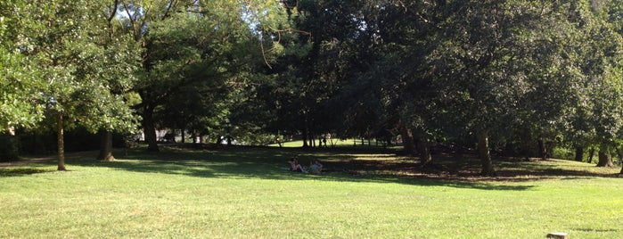 Wyman Park is one of The Great Outdoors.