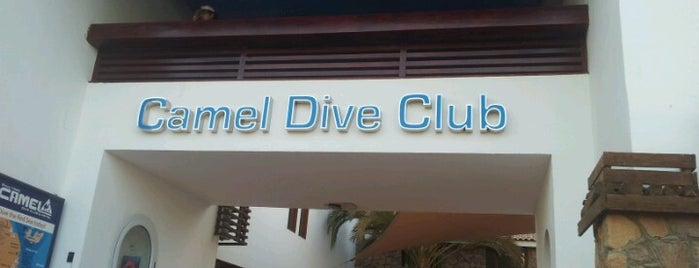 Camel Dive Center is one of Be Charmed @ Sharm El Sheikh.