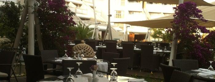 Sarigerme Main Restaurant is one of Fethiye, Turkey.