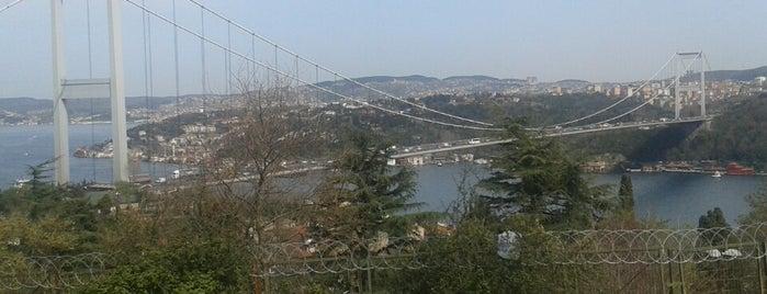Aşiyan Tepesi is one of aylakfare.