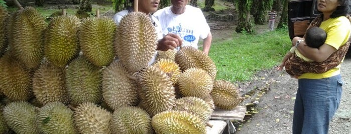 Durian bah sampuran is one of horeeeeeeeeeeeee.
