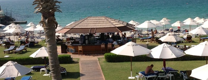 Dubai Marine Beach Resort & Spa is one of Dubai Food 6.
