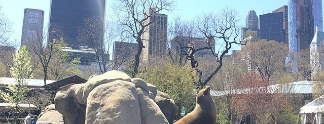 Central Park Zoo is one of The Best Things to do in New York in the Summer.