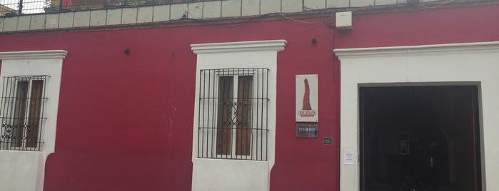 Casa Catrina is one of Tesoros de México.