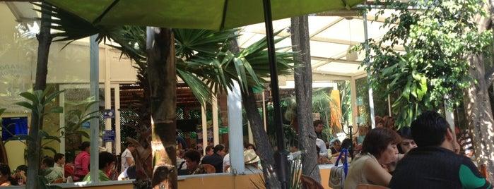 Comidita rica en Puebla