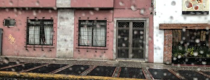 Salsa Condesa Dance Club is one of Nocturno.