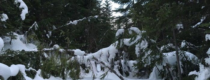 Cabin Creek Ski Area is one of Adventure.