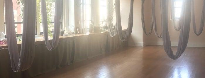 Studio Anya is one of Yoga @ New York City.