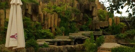 Làng Cà Phê Trung Nguyên is one of du lịch - lịch sử.