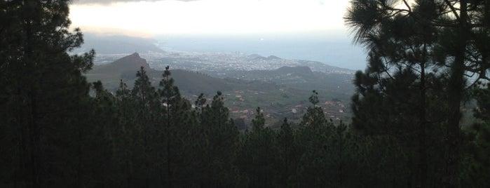 La Esperanza is one of Islas Canarias: Tenerife.