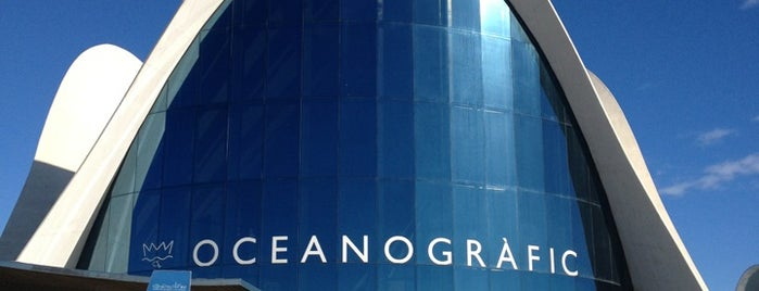 L'Oceanogràfic is one of The Best Of....
