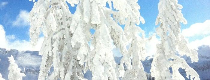 Les Carroz is one of Stations de ski (France - Alpes).