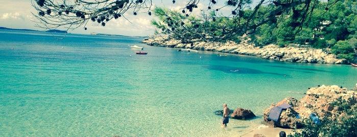 Cala Salada is one of Ibiza.