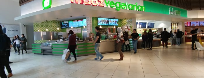 Maoz Vegetarian is one of Vegetarian and Veggie Friendly.