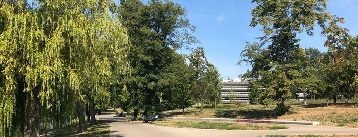 Nordhafenpark is one of Berlin parks.