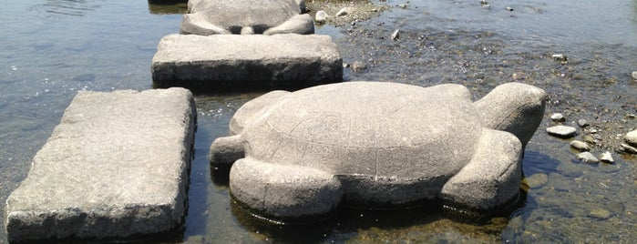 Turtle Stones is one of Kyoto.