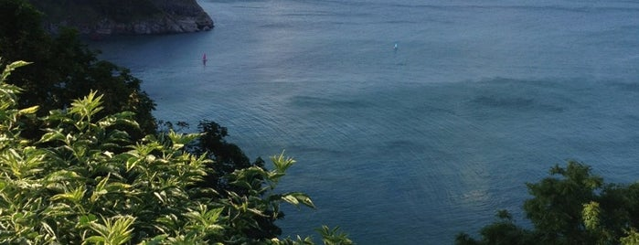 Babbacombe Inn is one of Guide to Torbay's best spots.