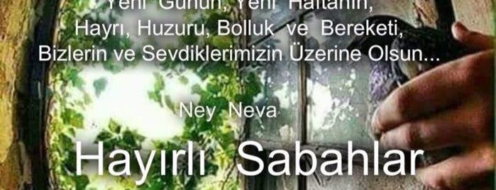 İbrahimpaşa is one of Bursa | Osmangazi İlçesi Mahalleleri.
