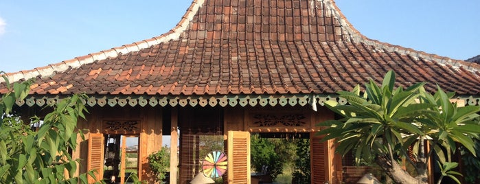 The Warung of Dandelion is one of Bali the heavenly.