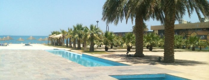 Hilton Kuwait Resort is one of Ahmed ahw.