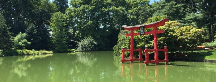 Brooklyn Botanic Garden is one of Top 20 Free Things to Do in NYC.
