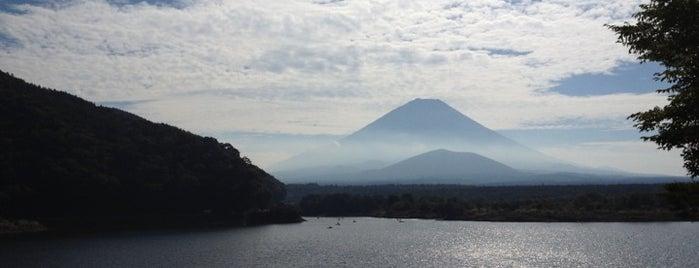 Lake Shoji-ko is one of ski bum.