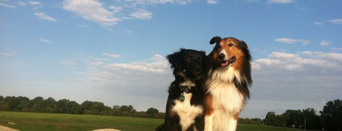Shelby Farms Dog Park is one of The 15 Best Places for Biking in Memphis.