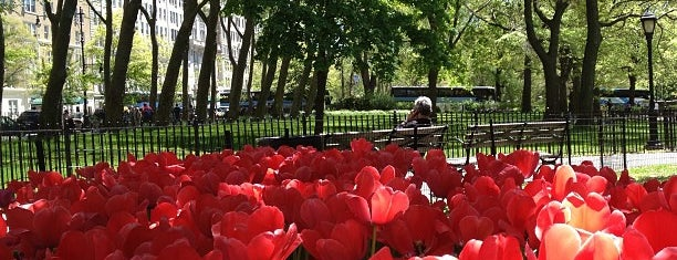Theodore Roosevelt Park (Museum Park) is one of USA NYC MAN UWS.
