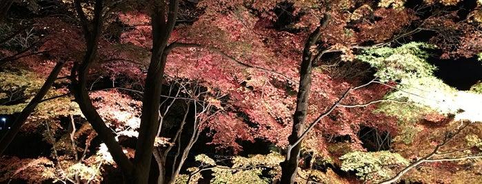 城山庵 is one of lieu a Tokyo 3.