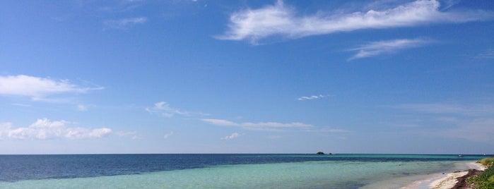 Loggerhead Beach is one of USA Key West.