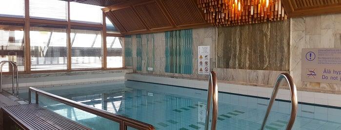 Hilton Swimming Pool is one of Orte, die Antonina gefallen.