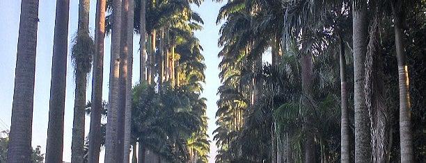 Jardim Botânico do Rio de Janeiro is one of Turistando.