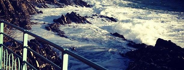 Passeggiata Anita Garibaldi is one of Yeti Trail Adventure.