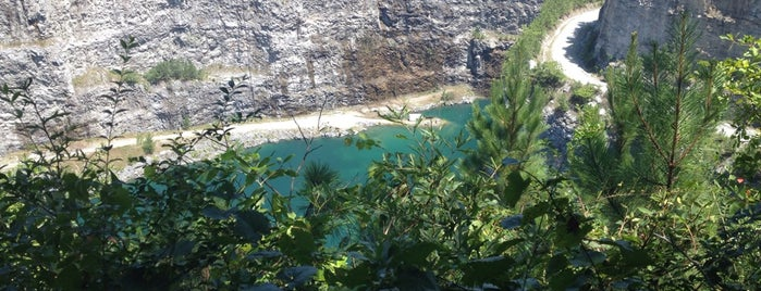 TWD Quarry is one of The Walking Dead.