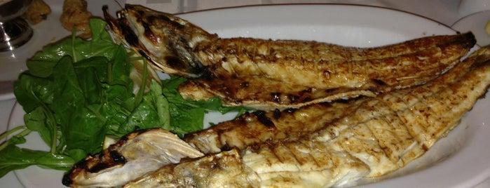 Lido Restaurant is one of Favorite Food.