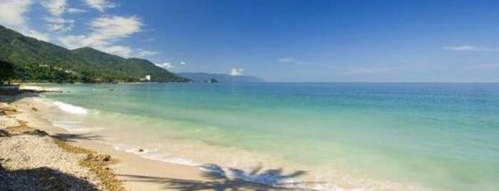 Playa Punta Negra is one of Puerto Vallarta.