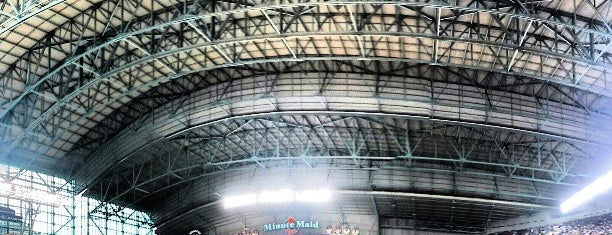 Minute Maid Park is one of MLB parks.