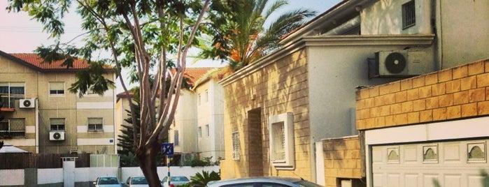 רחוב נתן הנביא is one of Образование.