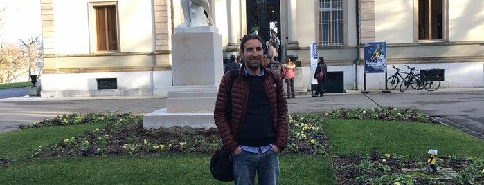 Musée d'Histoire des Sciences is one of Genève City Guide.